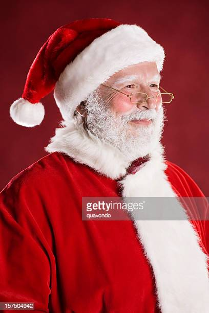 cheerful santa claus portrait, profile - santa face stock pictures, royalty-free photos & images