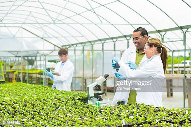 Fröhlich team des Wissenschaftler Forschung Pflanzen zusammen