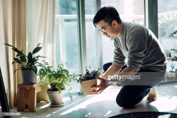 cheerful young asian man enjoying his time at home. he is taking care and watering plants in the living room by the balcony in the morning - asia stock pictures, royalty-free photos & images
