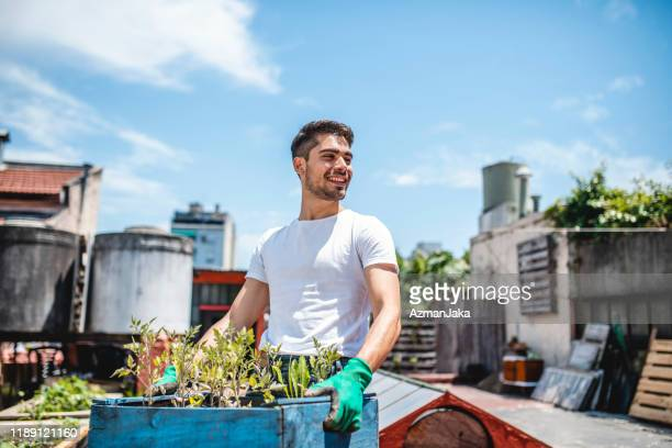 cheerful young hispanic gardener holding crate of plants - water tower storage tank stock pictures, royalty-free photos & images