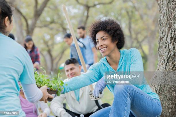 cheerful young woman plants flowers with neighbors - volunteer stock pictures, royalty-free photos & images