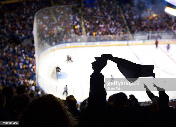 cheering a goal at ice hockey. - ice hockey stock pictures, royalty-free photos & images