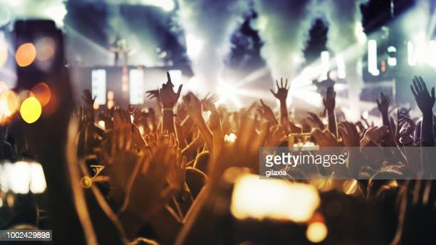 cheering crowd at a concert. - dj stock pictures, royalty-free photos & images