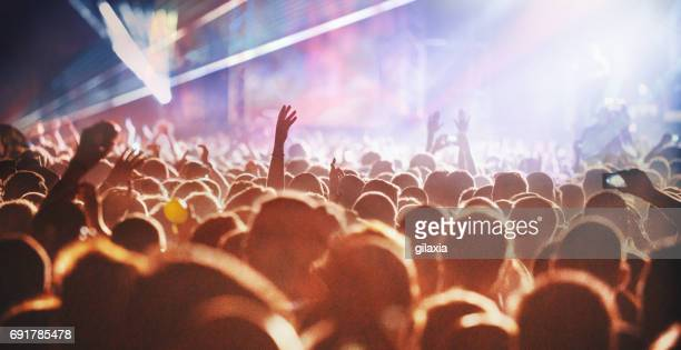 cheering crowd at a concert. - music festival stock pictures, royalty-free photos & images