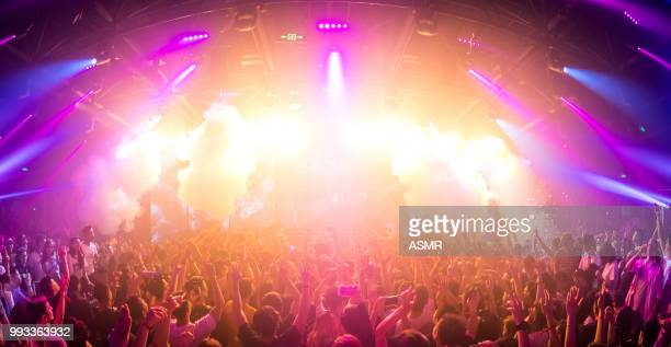cheering crowd at a concert - club dj stock pictures, royalty-free photos & images