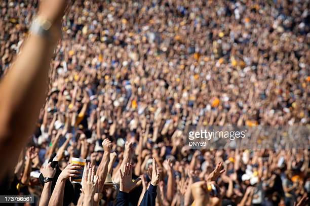 cheering crowd - full stock pictures, royalty-free photos & images
