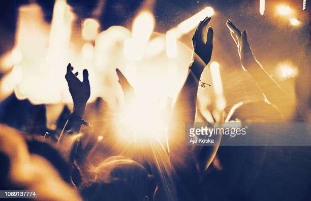 cheering fans at concert. - supporter stock pictures, royalty-free photos & images