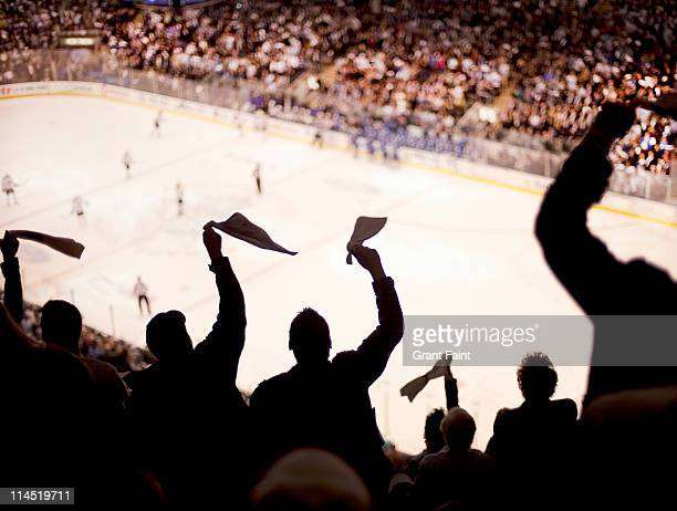 Cheering fans at Ice Hockey game.