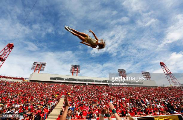 A cheerleader for the Edmonton Eskimos goes flying through the air while they played the Calgary Stampeders during their CFL football game September...