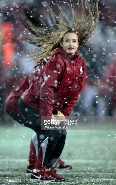 A cheerleader for the Washington State Cougars performs during the game against the Washington Huskies at Martin Stadium during the 111th Apple Cup...
