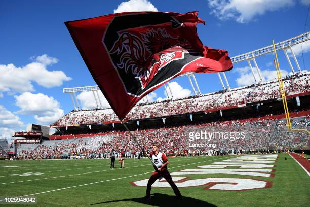 A cheerleader of the South Carolina Gamecocks waves a flag during their game against the Coastal Carolina Chanticleers at WilliamsBrice Stadium on...