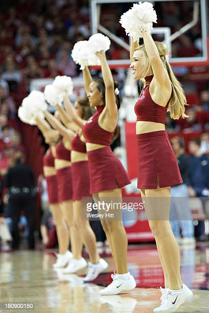 Cheerleaders for the Arkansas Razorbacks perform during a game against the Florida Gators at Bud Walton Arena on February 5, 2013 in Fayetteville,...