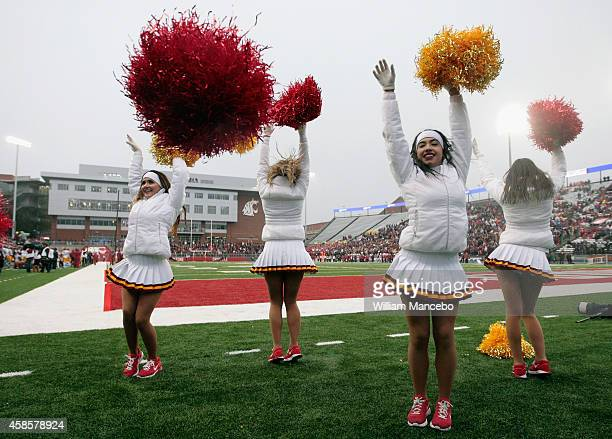 Cheerleaders for the USC Trojans perform during the game against the Washington State Cougars at Martin Stadium on November 1 2014 in Pullman...