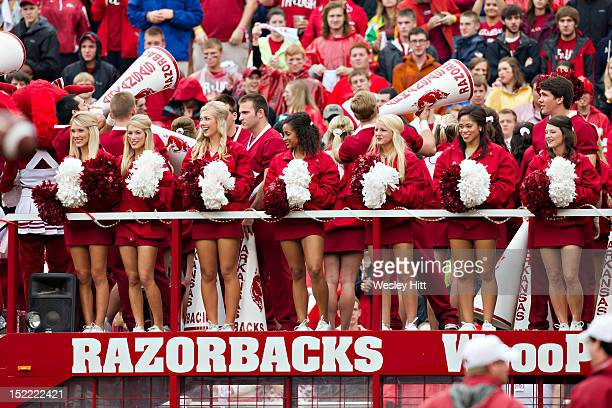 Cheerleaders of the Arkansas Razorbacks ride around the stadium before a game against the Alabama Crimson Tide at Razorback Stadium on September 15,...