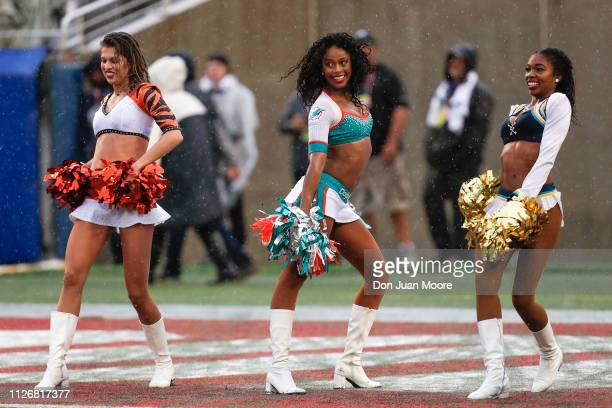 Cheerleaders representing the Cincinnati Bengals Miami Dolphins and Los Angeles Chargers from the AFC Team performs during the NFL Pro Bowl Game at...