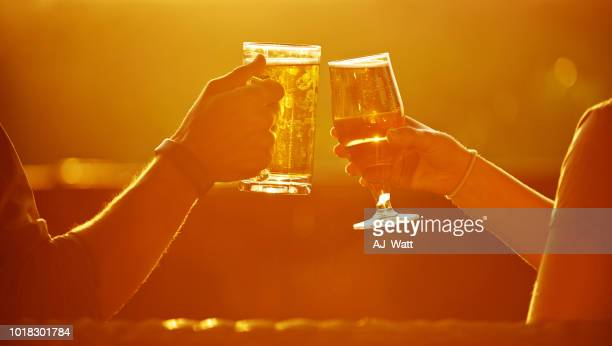 cheers to another great day on holiday - ale stock pictures, royalty-free photos & images