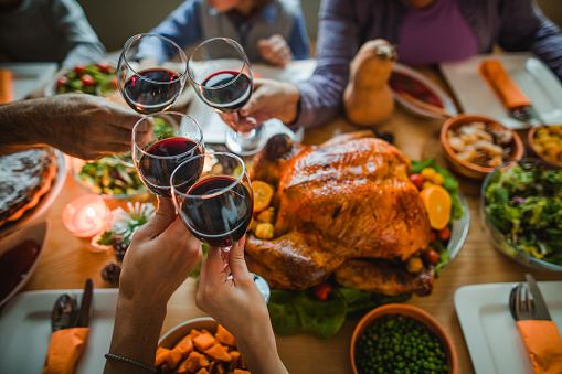 Cheers to this great Thanksgiving dinner! 1057497684