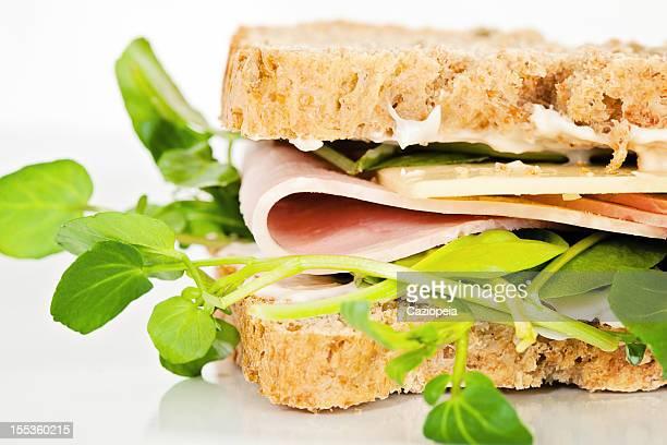 Cheese and Ham Salad Sandwich