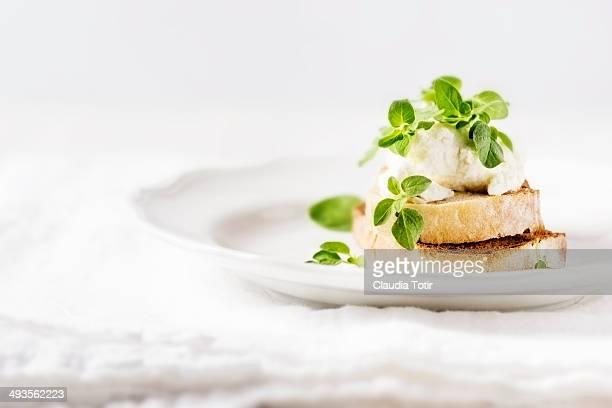 Cheese Crostini Appetizer