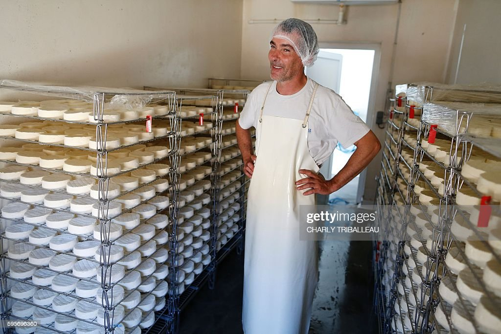 Cheese maker Nicolas Durand stands next to freshly made camembert cheeses in an haloir of the cheese factory on August 24, 2016 at the Fromagerie Durand in the Normandy's village of Camembert, northwestern France. The Fromagerie Durand, located some kilometers away from Lactalis group, struggles to survive in front of the dairy giant. / AFP / CHARLY