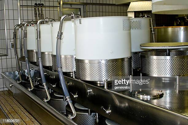 Cheese Molds Ready to Receive Processed Milk Curd