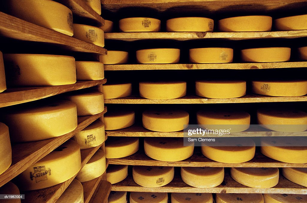 Cheese on Shelves : Stock Photo