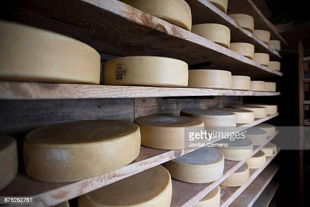cheese resting on a shelf - à profusion photos et images de collection