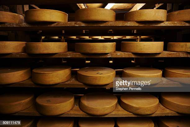 Cheese rounds in traditional cheese cave