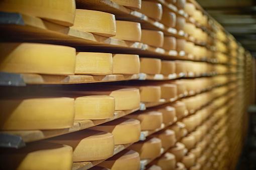 Cheese Wheel on Shelf 956005154
