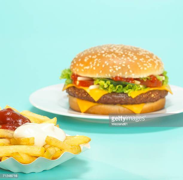 cheeseburger with french fries, close-up - paper plate stock photos and pictures