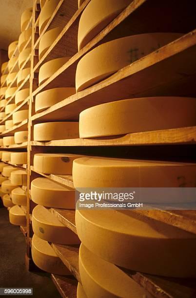 cheeses in maturing cellar - 熟した ストックフォトと画像