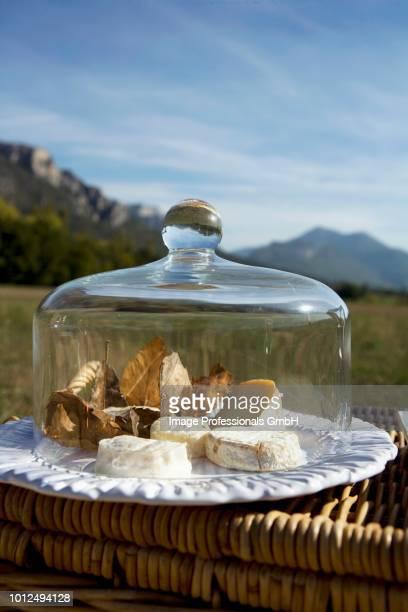 cheeses under a glass dome outdoors - glocke stock-fotos und bilder