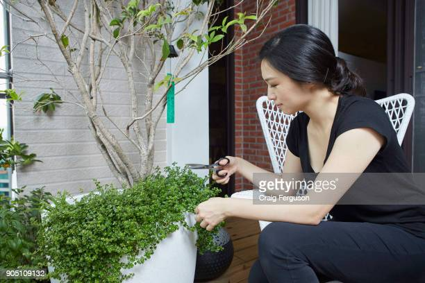 Chef Chen Lansu tends to her herb garden Chef Chen was listed as Asia's best female chef in 2014 and her restaurant Le Mout is repeatedly placed in...
