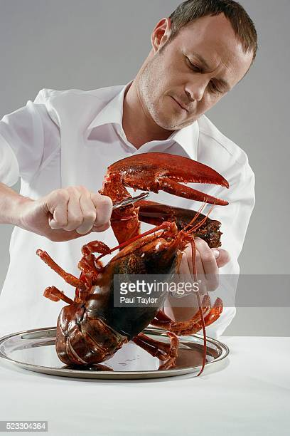 Chef cracking lobster claw