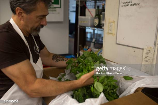 Chef Paolo Laboa begins to remove the Genovese basil leaves from the stems before making his family Genovese pesto recipe at Solo Italiano on Tuesday...