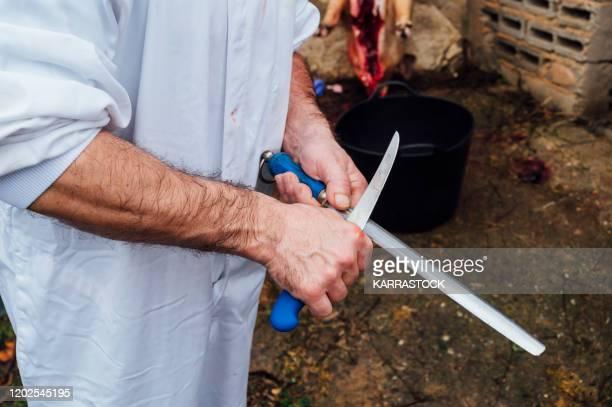 chef sharpening the knife - 食肉処理場 ストックフォトと画像
