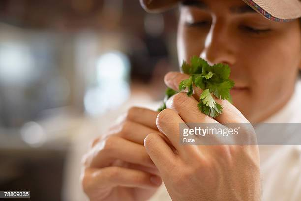 Chef Smelling Coriander