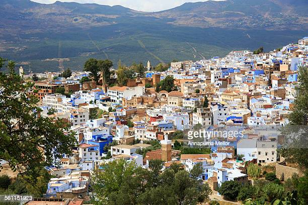 Chefchaouen town through the trees, Morocco