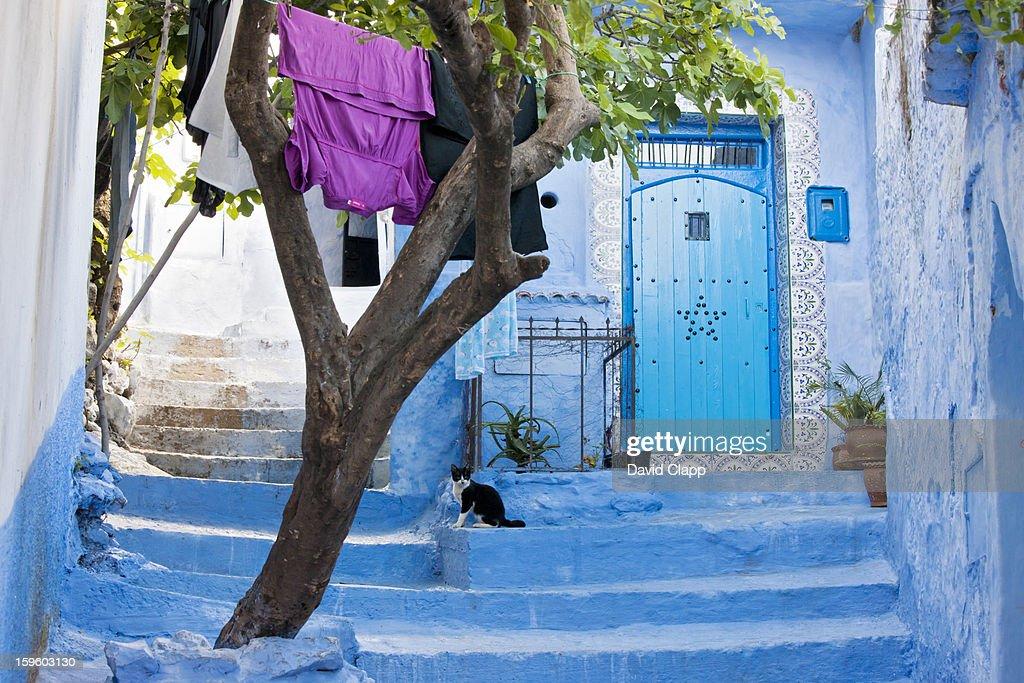 Chefchauen, Morocco, North Africa : Stock Photo