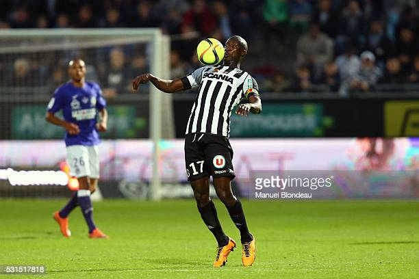 Cheikh Ndoye of Angers during the football french Ligue 1 match between Angers SCO and Toulouse FC on May 14 2016 in Angers France