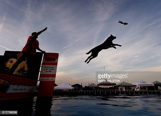 Chelle Petersen watches as her dog 'Lilah' leaps into the water to record the distance of her jump during the Dock Dogs West Coast Challenge in...