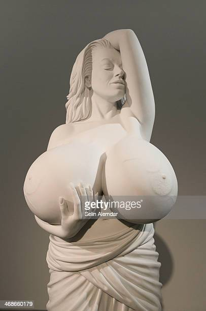 'Chelsea Charms' by Marc Quinn is displayed at Arter Gallery on February 9 2014 in Istanbul Turkey in Istanbul