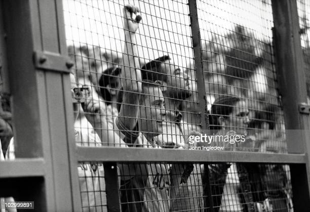 Chelsea fans at the PreSeason Friendly match between Oxford United and Chelsea held on July 28 2000 at the Manor Ground in Oxford England