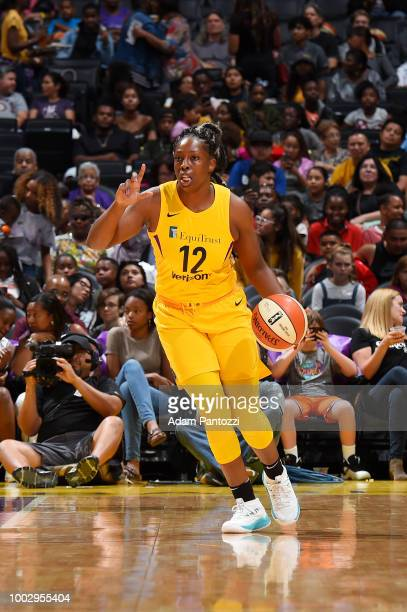 Head coach Brian Agler of the Los Angeles Sparks directing his team against the Indiana Fever during a WNBA basketball game at Staples Center on July...
