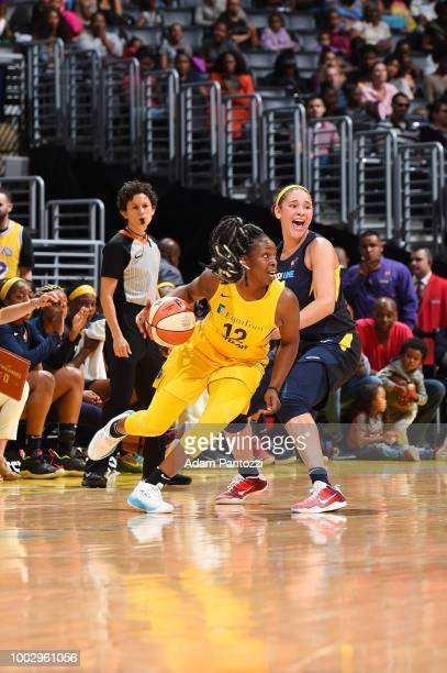 Chelsea Gray of the Los Angeles Sparks handles the ball against the Indiana Fever on July 20 2018 at STAPLES Center in Los Angeles California NOTE TO...