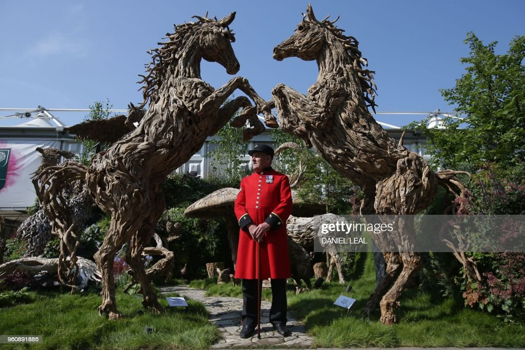 Chelsea Pensioner poses at the Driftwood Sculptures by James Doran Webb at the 2018 Chelsea Flower Show in London on May 21, 2018. - The Chelsea flower show, held annually in the grounds of the Royal Hospital Chelsea, opens to the public on May 22.
