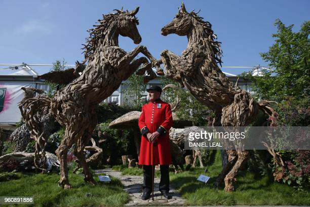 Chelsea Pensioner poses at the Driftwood Sculptures by James Doran Webb at the 2018 Chelsea Flower Show in London on May 21 2018 The Chelsea flower...