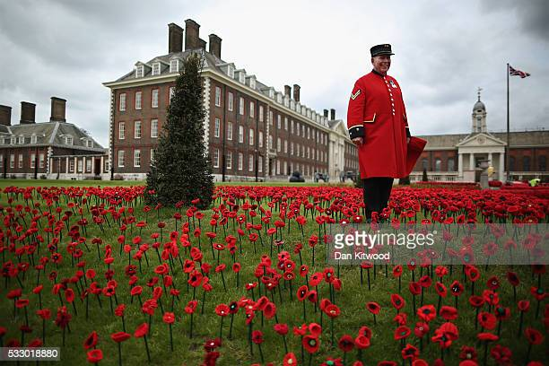 Chelsea PensionerDave Thompson poses in an installation of Poppies at Royal Hospital Chelsea on May 20 2016 in London England The installation...