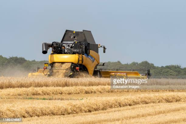 Cheltenham Gloucestershire England UK Combine harvester harvesting winter barley which after drying will go to brew beer