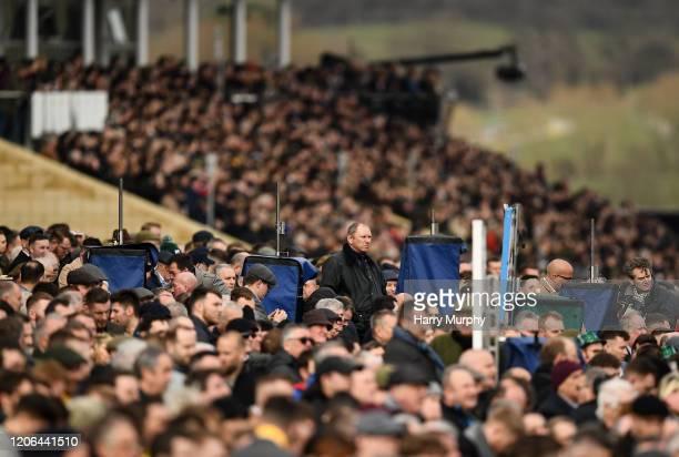 Cheltenham , United Kingdom - 10 March 2020; A racegoer watches on during Day One of the Cheltenham Racing Festival at Prestbury Park in Cheltenham,...